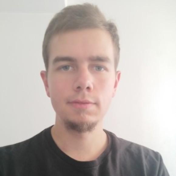 Illustration du profil de remi
