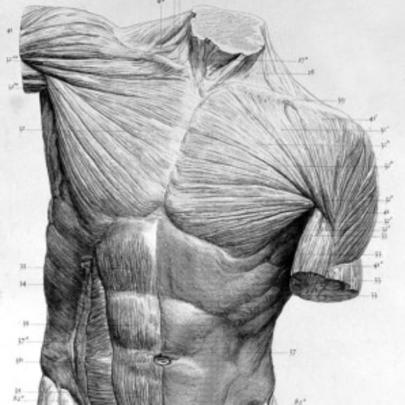 Illustration du profil de hydro